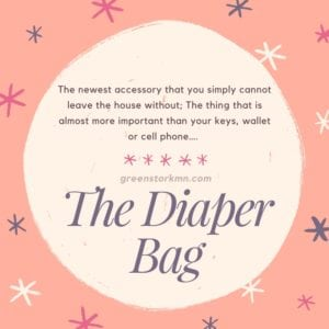 the-diaper-bag-blog-meme